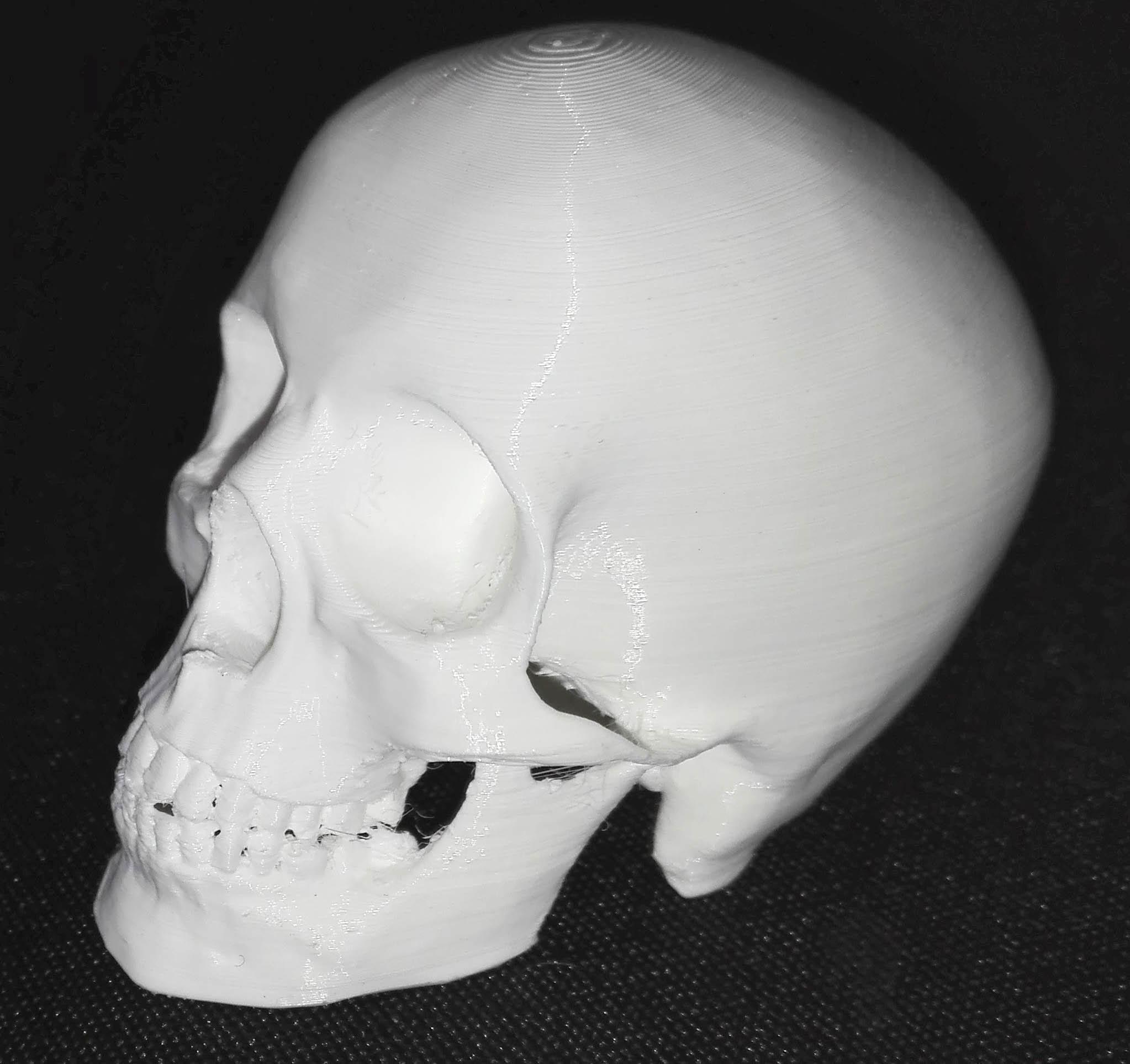 Imprimante 3D DIY Planetediy.fr_Impression3D_3D_Printing_Francois_Doffin_15