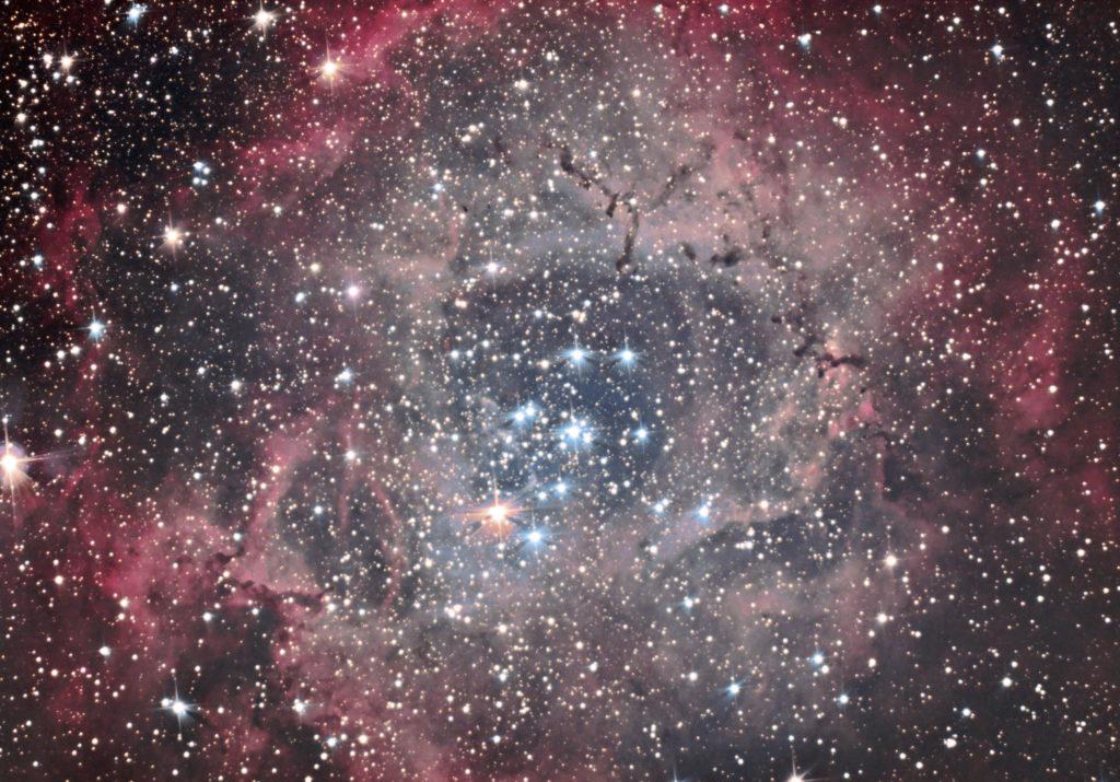NGC2237 ASI294MC PRO ZWO Francois DOFFIN