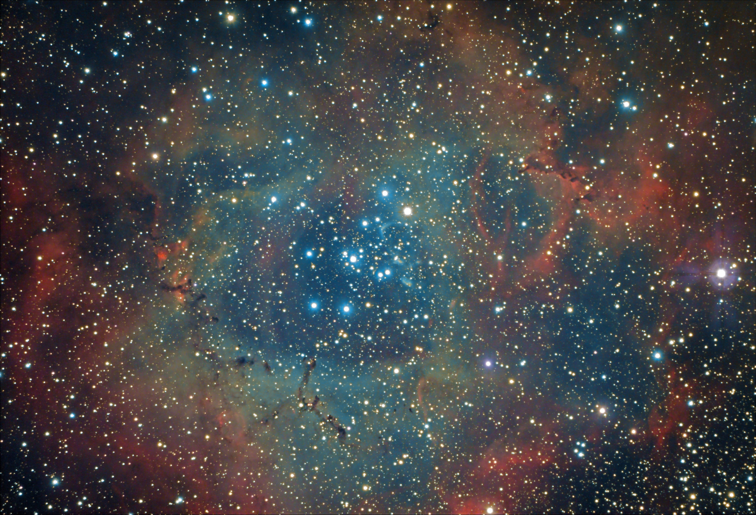 Nébuleuse Rosette NGC2237