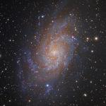 M33 Galaxie Triangle Galaxy